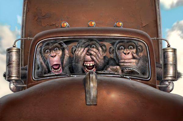 Majmuni Mark Fredrikson